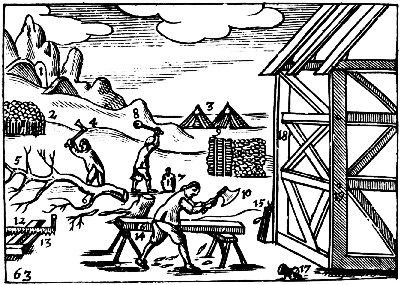 The principal tools that the carpenter needed to frame a house: felling axe (4), wedge and beetle (7 and 8), chip axe (10), saw (12), trestle (14), and pulley (15). (Charles Hoole transl., London, 1685. Courtesy of the Folger Shakespeare Library.)